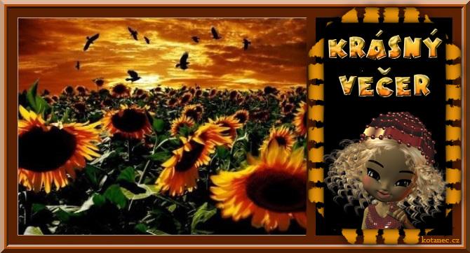 An den Beitrag angehängtes Bild: http://kotanec.cz/media/k2/attachments/014_pAuyAny_kryAsnyz_veaer.jpg